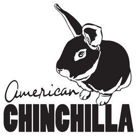 (URA) American Chinchilla Outline Printe