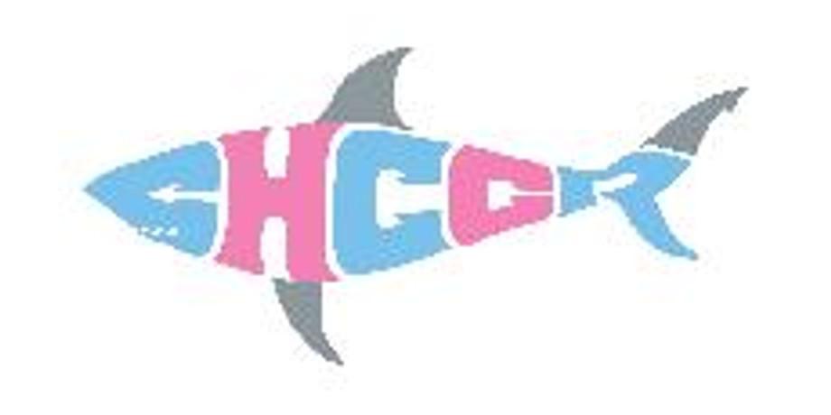 H3AC vs CHCCR @ CHCCR