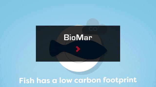 BioMar.jpg