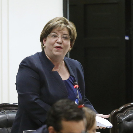 "Diputada Díaz Mejía: ""Un show mediático"""