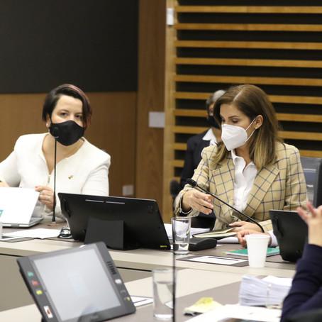 Aprobado texto sustitutivo a Fondo de Avales para apoyar empresas afectadas por la pandemia