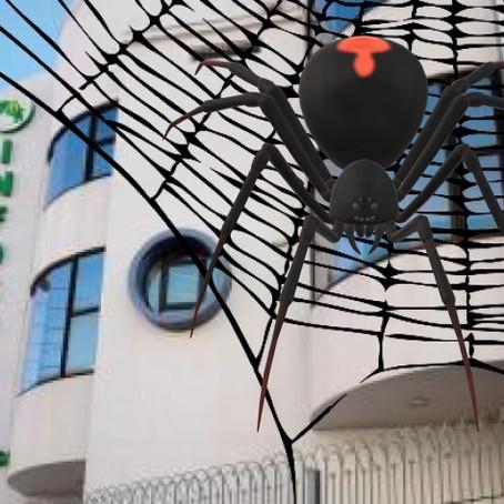 """Supuesta telaraña de """"corrupción"""" invade al INFOCOOP"""