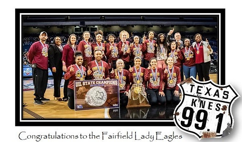 Lady Eagles vs Argyle State Basketball Game 2020 DOWNLOAD