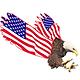 USA Roof & Restorations