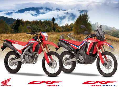 Honda CRF300L And CRF300 Rally Confirmed For New Zealand