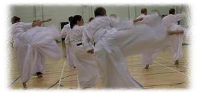 Shotokai Karate Kata