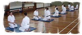 Shotokai, Karate
