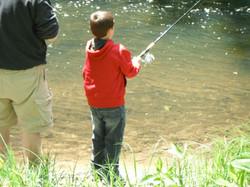 Fishimg