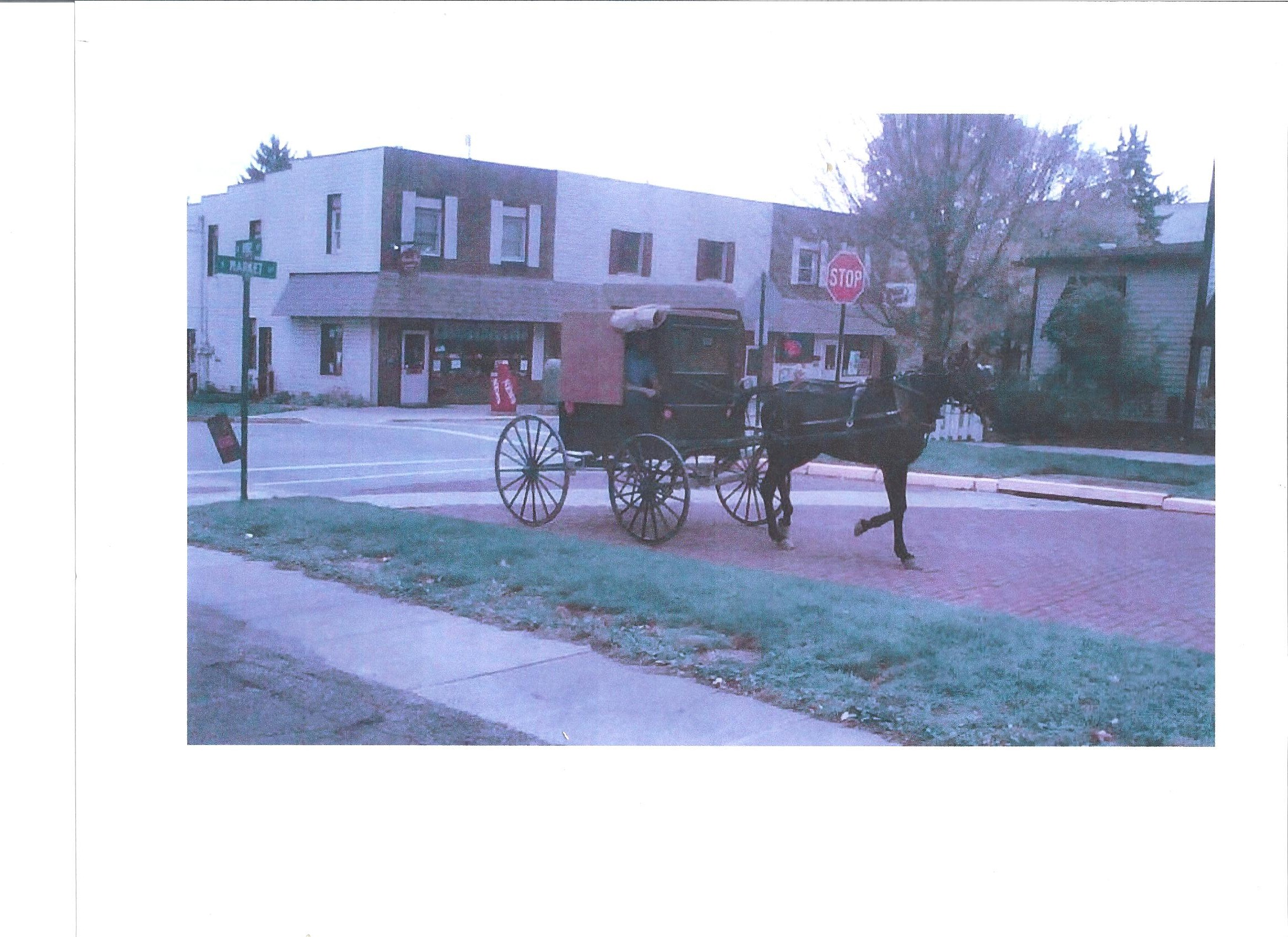 Amish New Wilmington 001.jpg