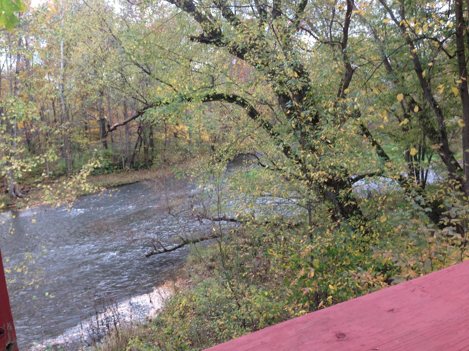 Creek from Deck.jpg
