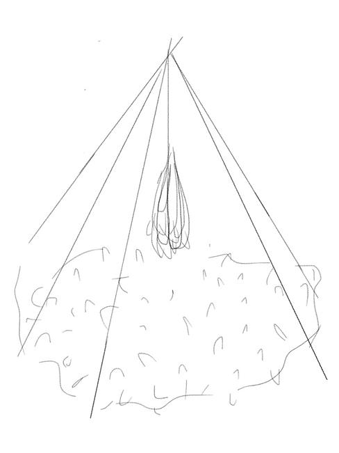 Verschillende manieren van staketsels vo