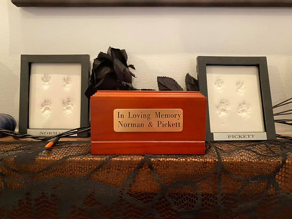 Founder's memorial for beloved rats Norman and Pickett