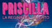 Priscilla_big_{80694e7a-6305-4dcd-ba30-a
