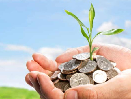 Money does grow on trees: investing in regenerative agriculture