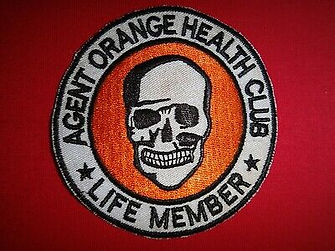 Agent-ORANGE-HEALTH-CLUB-LIFE-MEMBER-Vie