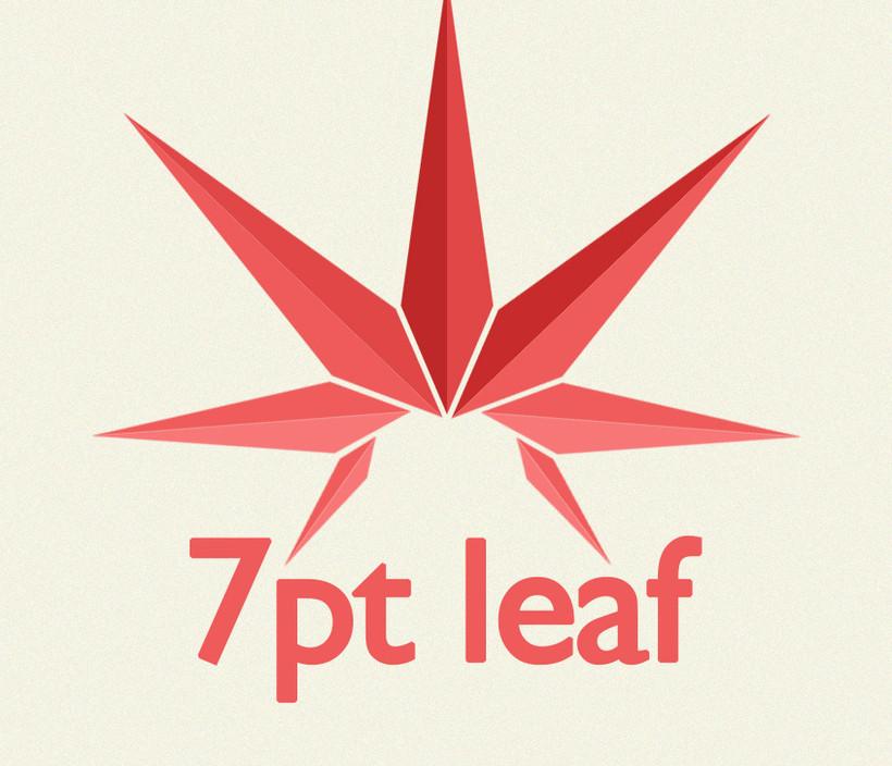 7pt leaf Logo