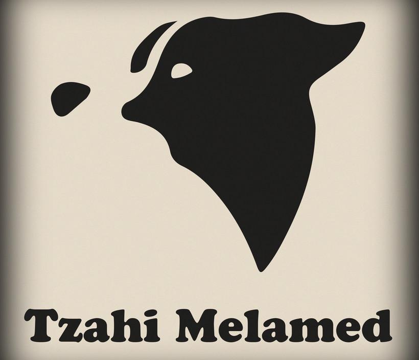 Tzahi M Logo