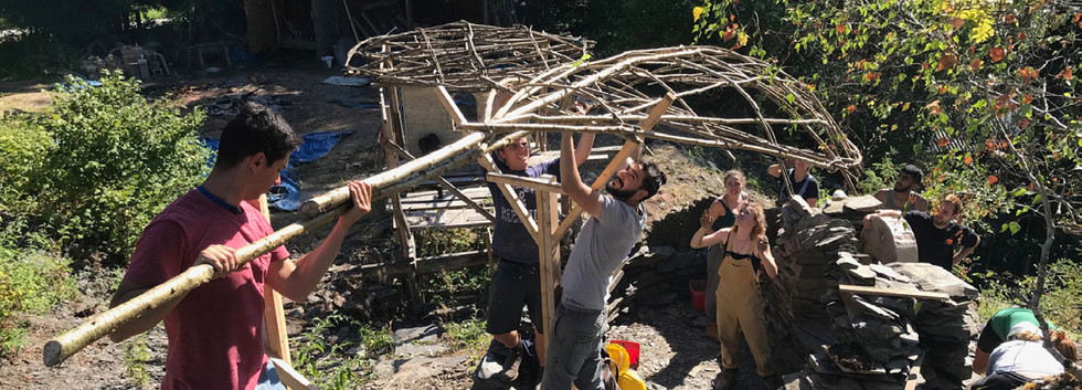 Assembling a Timber Canopy