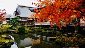 【e-seminar series】Zen and Japanese Tea Ceremony #2