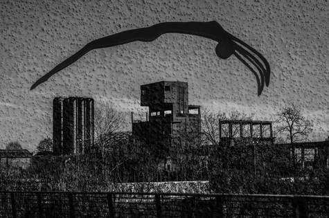 dancing_silhouette_01.jpg