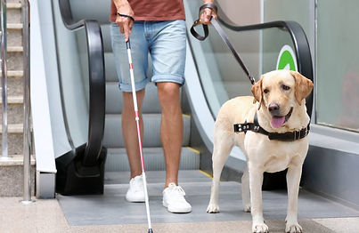 person who is blind in airport with service dog