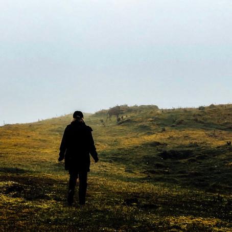 A Secret in the Mist: Paramo de Chingaza