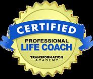 Professional_Coach_Sara Sadeghi Free Spirit Life Coach & Energy and Reiki Therapist
