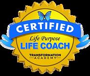 Life_Purpose_Coach_Sara Sadeghi Free Spirit Life Coach & Energy and Reiki Therapist