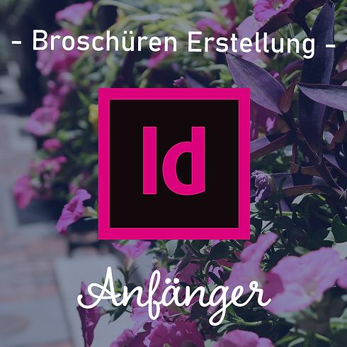 Adobe InDesign | Broschüren Entwicklung | Anfänger| 95€