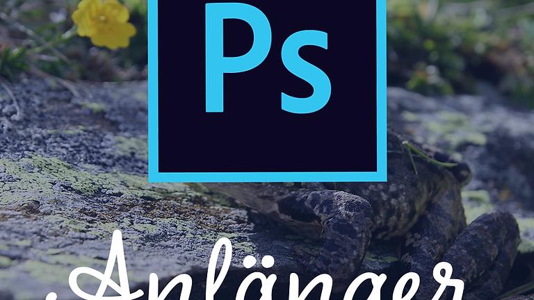Adobe Photoshop   Anfänger