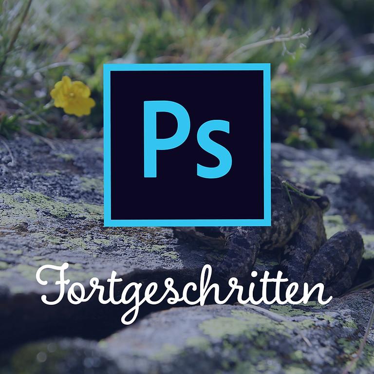 Adobe Photoshop   Fortgeschritten   85€