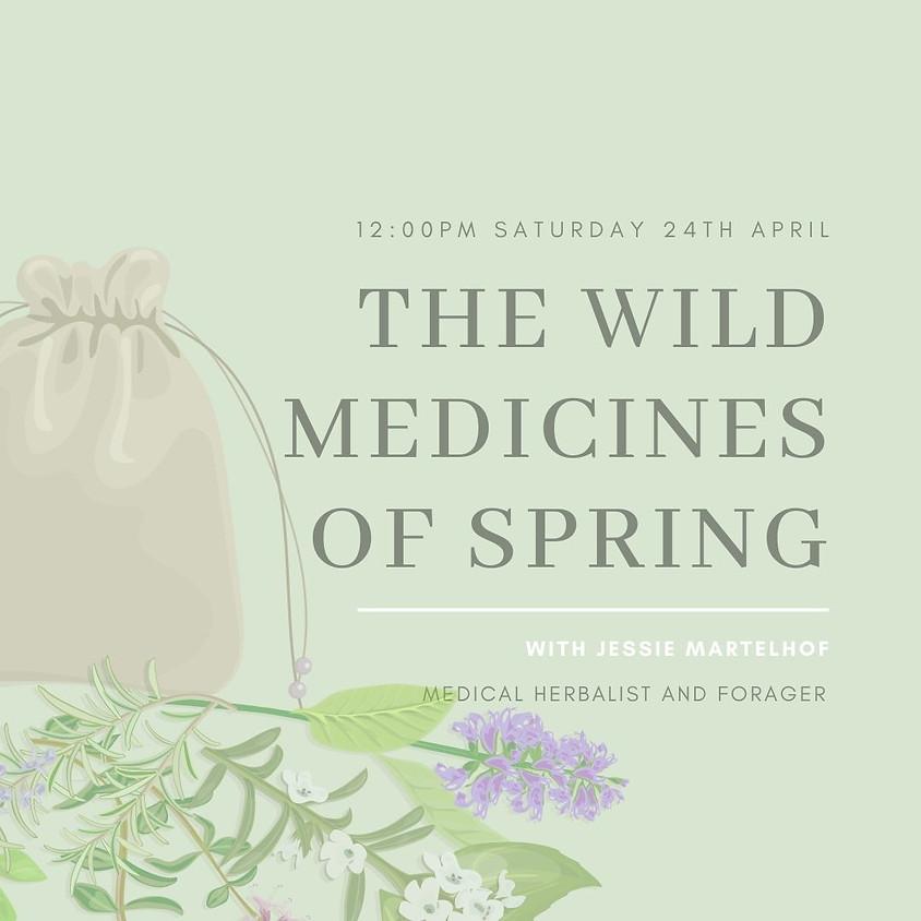 Wild Medicines of Spring with Jessie Martelhof BSc, MNIMH