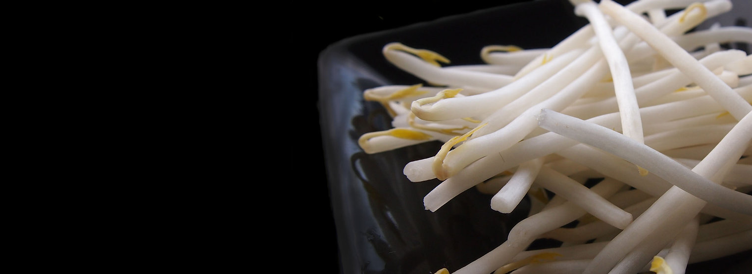 Beansprout dish.jpg