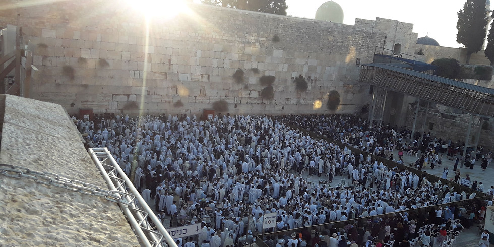 "Sunday Tours: Parshat Vayeira- ""ירושלים הרים סביב לה"""