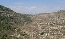 Nachal Kfira