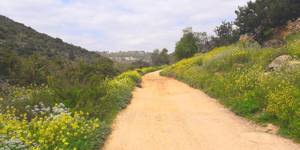 נחל קנה- הגבול בין שבטי בני יוסף