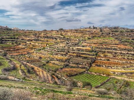 The Beit midrash Shetach on                                            The path of the Avot-  The ce