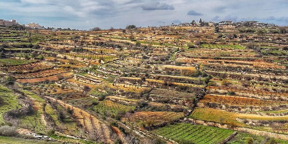 אזור ההר- דרך האבות מאלון שבות למצפור ה1000 בנווה דניאל