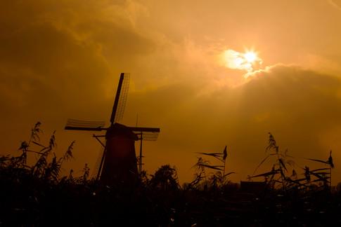 Netherlands 1.jpg