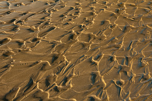 Abstract - wide - brown - sand.jpg