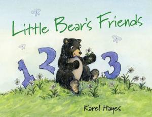 Little Bear's Friends