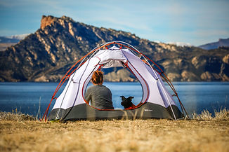 canine camping