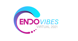 ENDO VIBES LOGO-01.png