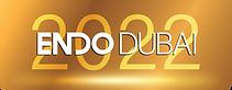 ENDO Dubai Logo- with BG.png