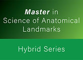 Courses Colors_Master in Science Anatomi
