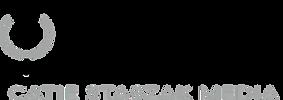 CSM logo FINAL.png