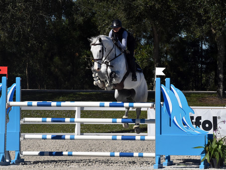 Deck the Stalls with M&R Equestrian Services' Training Days Partner, Vitalize!