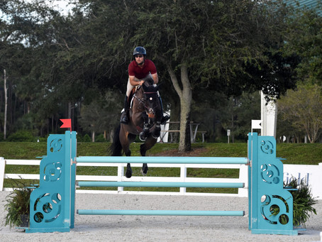 EnviroEquine & PET Partners with M & R Equestrian Services' Training Days