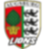 Augsburg Lions Logo.png