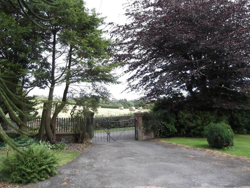 Entrance drive & front field.JPG